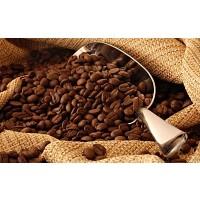 Café Orgánico Molido y en Grano