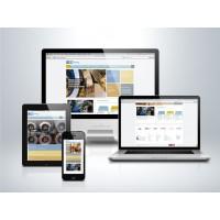 Tienda On-Line personalizada y Hosting